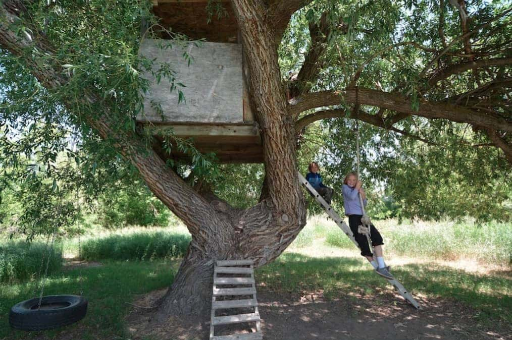 An Epic Treehouse on the Farm of our Couchsurfing Host in Sheridan Wyoming