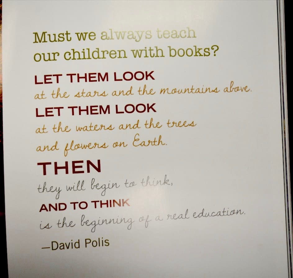Must we always teach our children with books? Let them look at the stars and the mountains above. Let them look at the waters and the trees and flowers on Earth. Then they will begin to think, and to think is the beginning of a real education. - David Polis