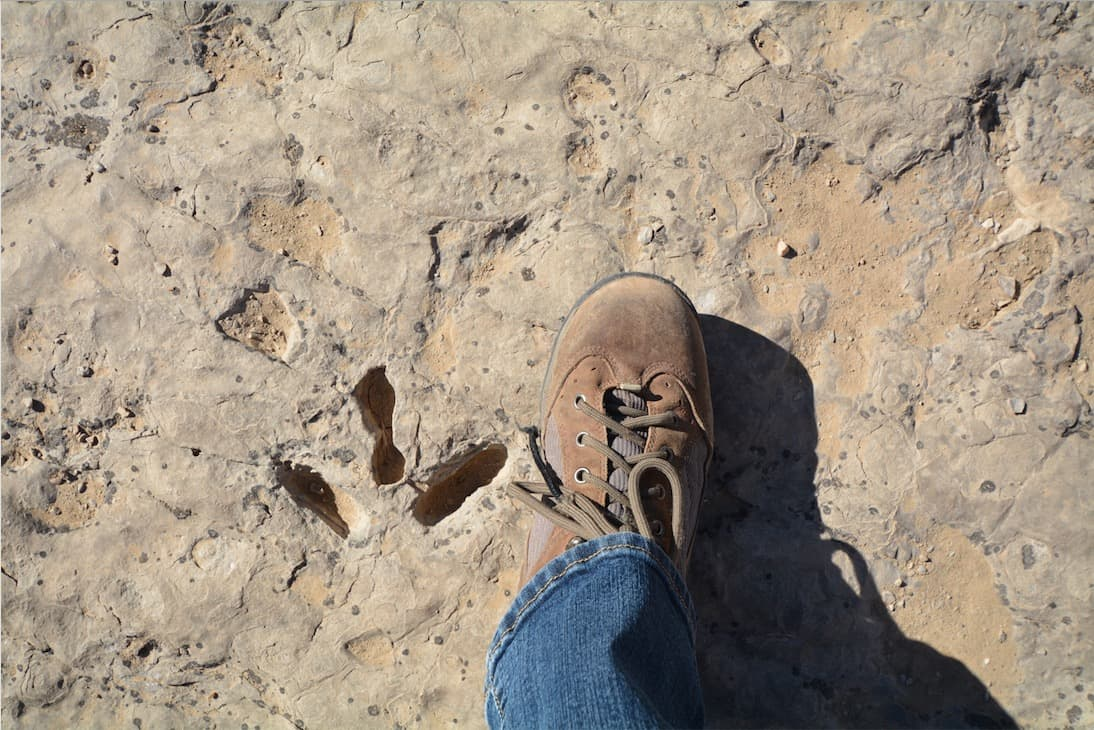 A dinosaur footprint in Red Gulch Dinosaur Tracksite in Big Horn County Wyoming