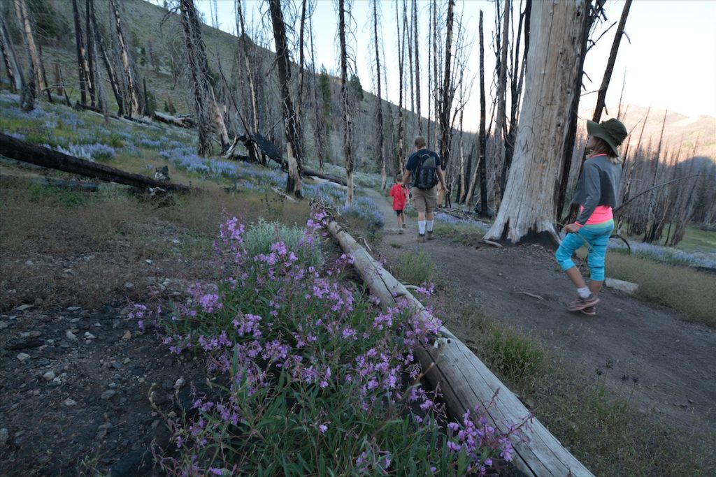 A family hikes in the Sawtooth Mountains of Idaho