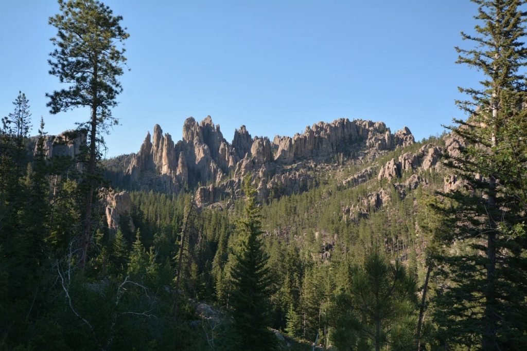 Cathedral Spires from the Needles Highway at Custer State Park in the Black Hills of South Dakota