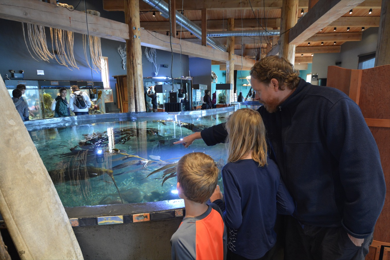 A family admires and exhibit in Ucluelet Aquarium in Ucluelet, Vancouver Island, BC