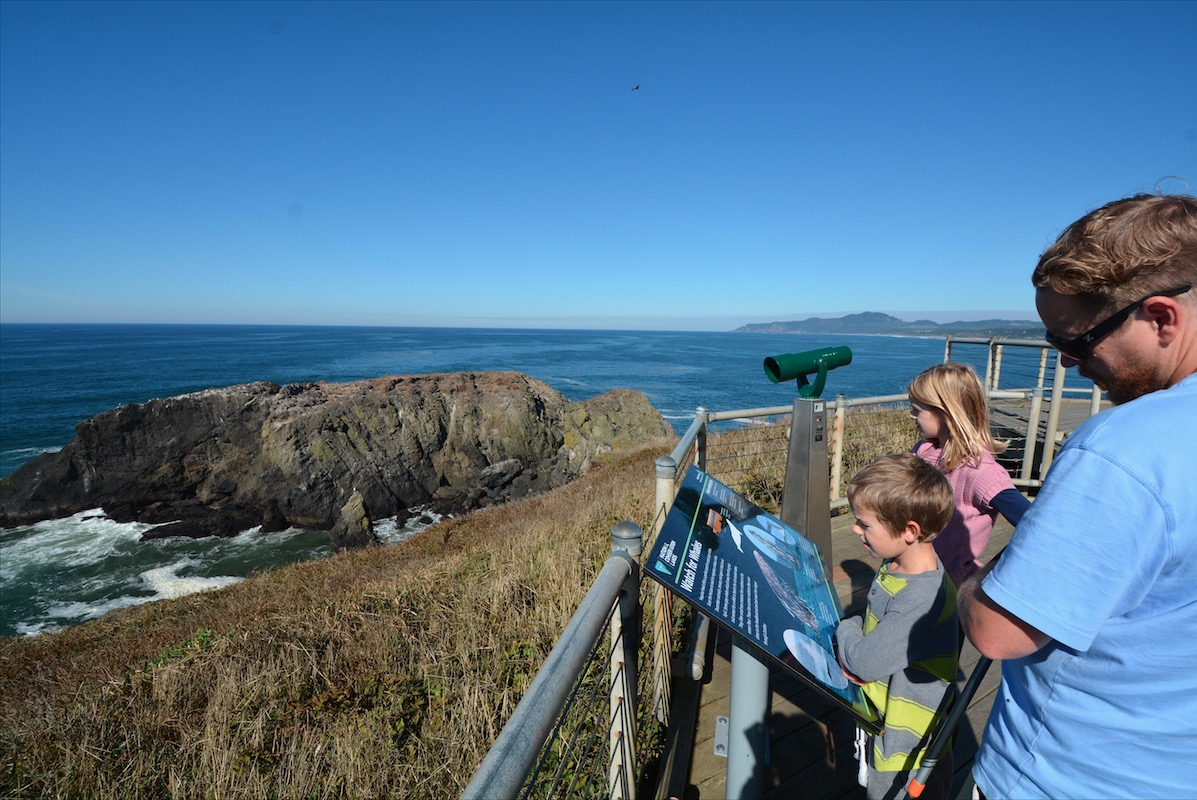 A family reads a Pacific coast whale signboard