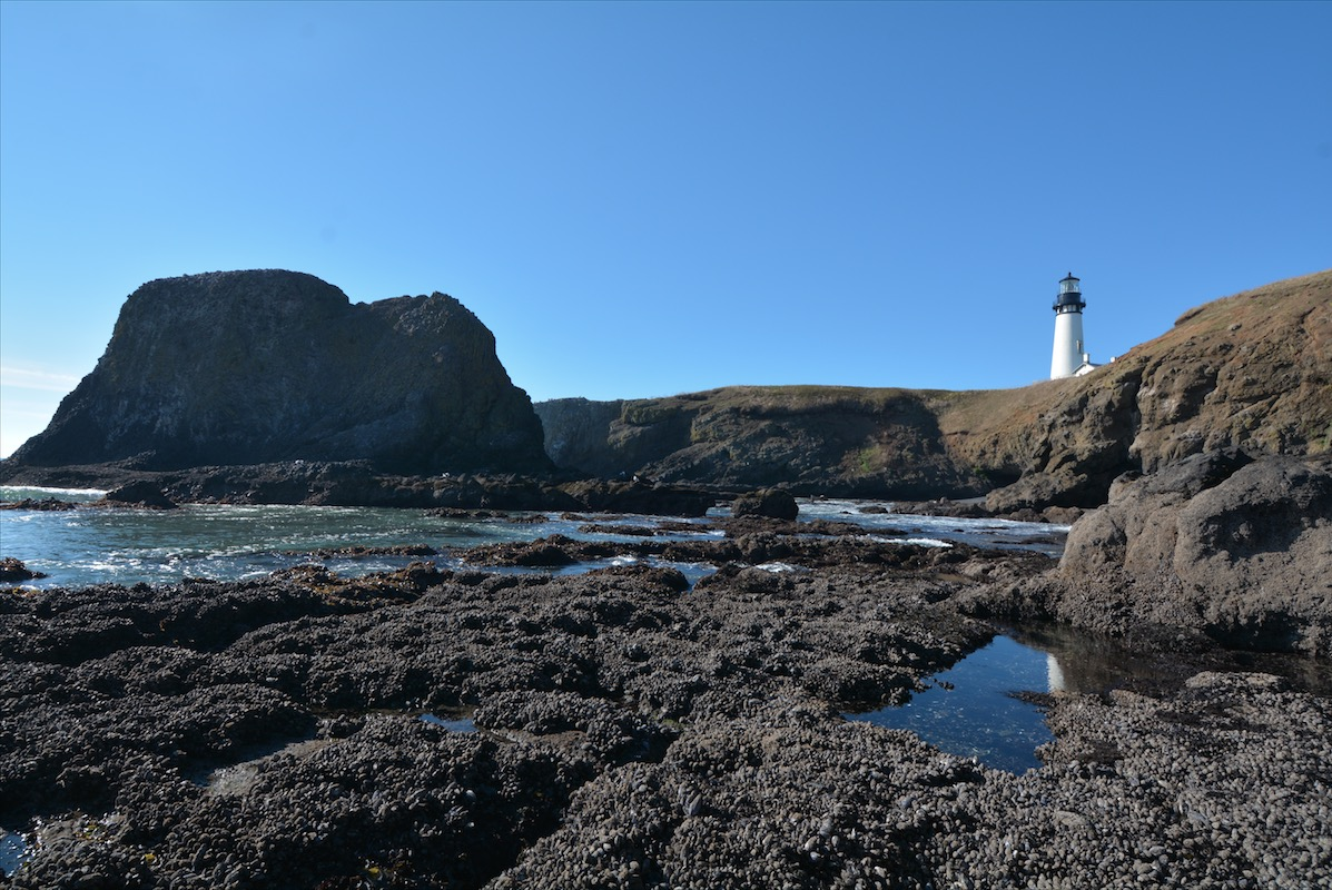 A lighthouse overlooking tidepools along the pacific coast