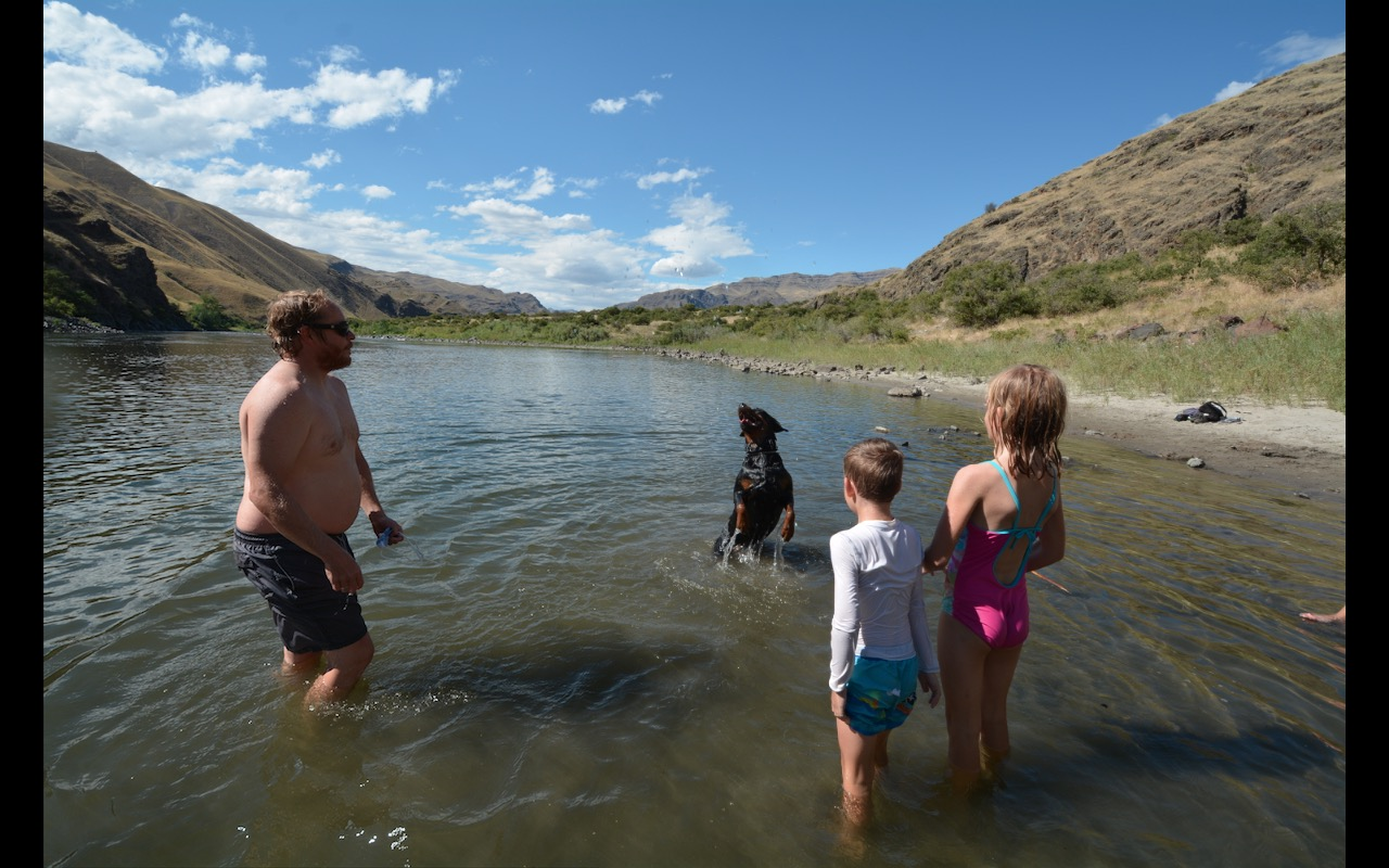 A family playing with a black labrador dog in the shallows of the Snake River near Riggins, Idaho