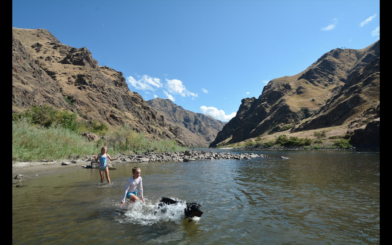 Kids playing with a black labrador dog in the shallows of the Snake River near Riggins, Idaho
