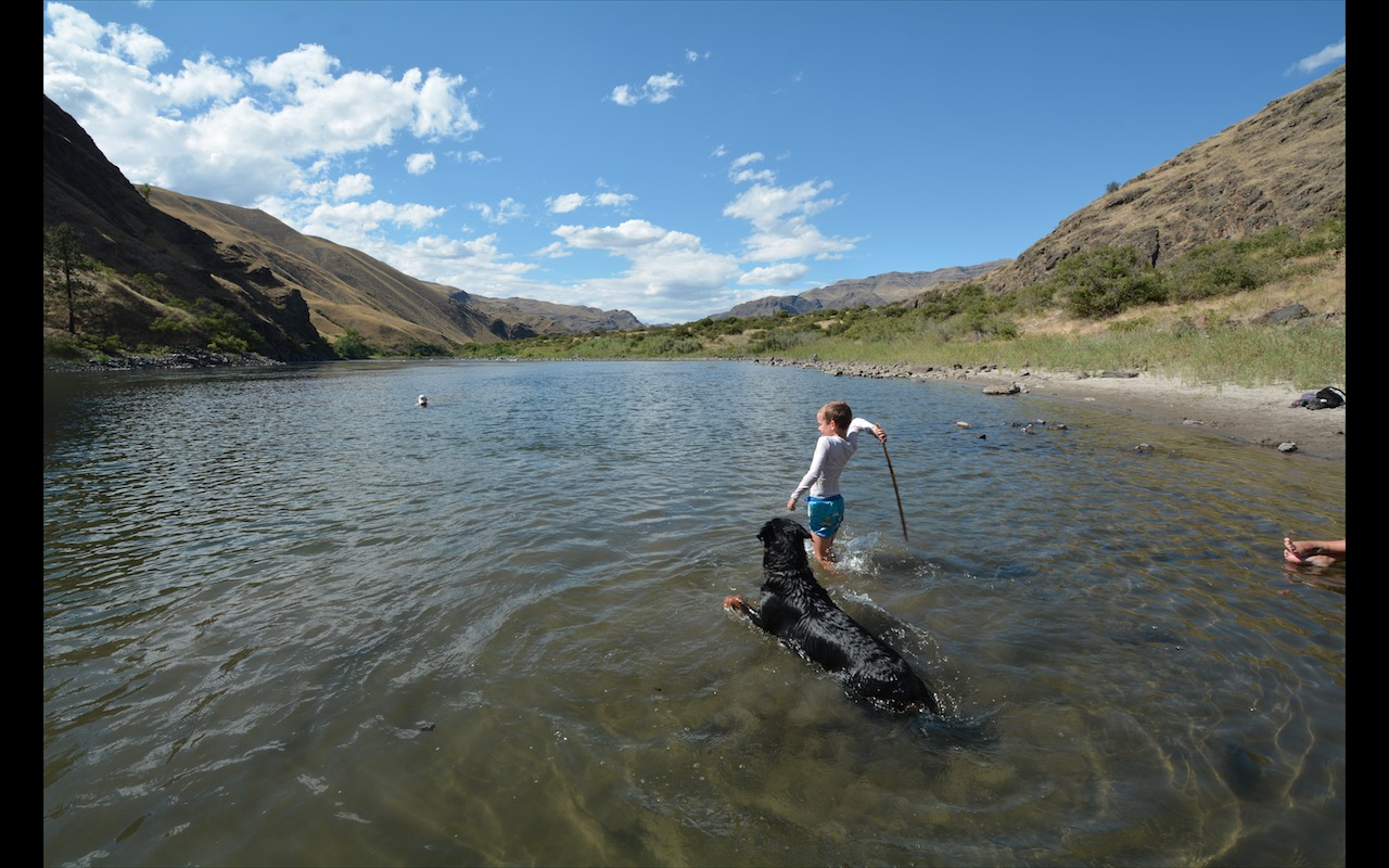 A boy throws a stick for a black labrador dog in the shallows of the Snake River near Riggins, Idaho